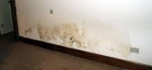 Rising Damp Treatment